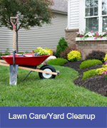 Lawn Care and Yard Cleanup